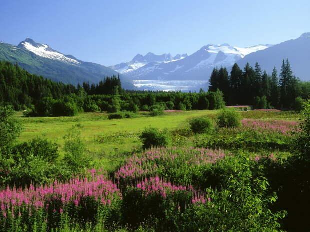 Аляску продали, сдали в аренду или подарили?