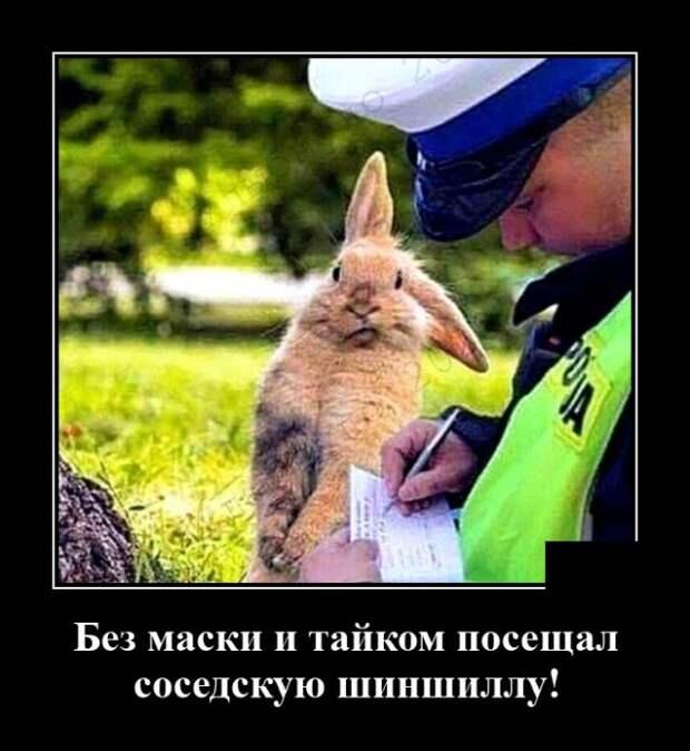 Демотиватор про штрафы