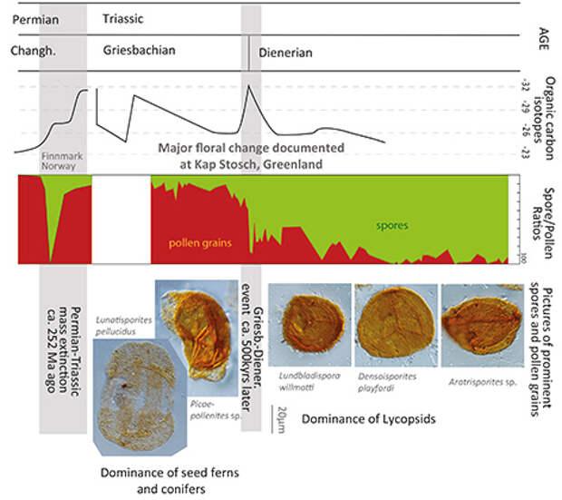 Ученые узнали о произошедшей 250 миллионов лет назад глобальной катастрофе