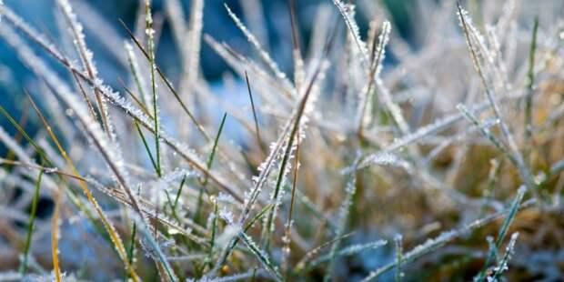 Холодный Скандинавский антициклон в ближайшие три дня продолжит влиять на погоду в РК