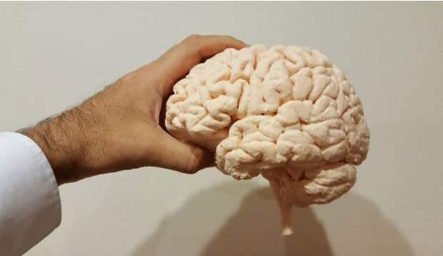 Медики назвали популярное лакомство, которое улучшает работу сердца и мозга