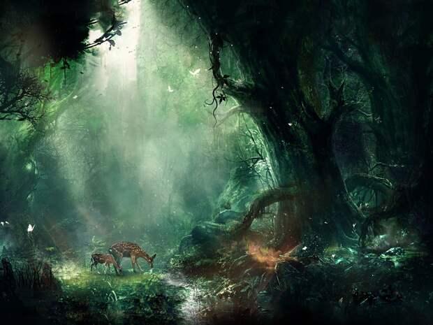 Картинки по запросу fantasy wallpaper 1920x1080 hd
