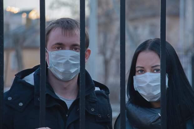 Всех приезжающих в Севастополь хотят закрывать на 14-дневный карантин