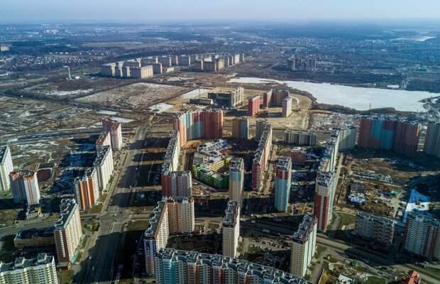Петербург «под Шубаревым»