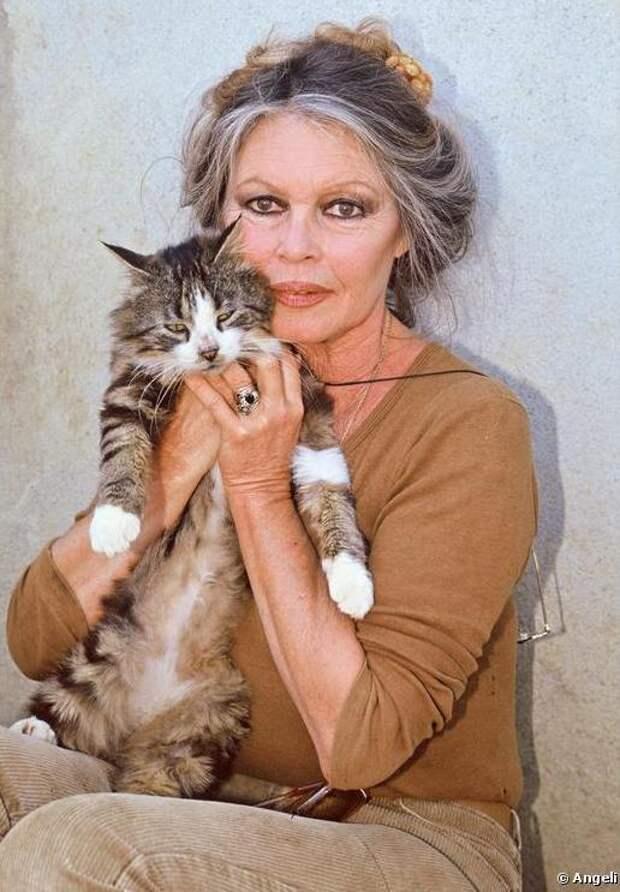 Брижит Бардо и животные (фото): кошка / Brigitte Bardot & animals (Photos): cat