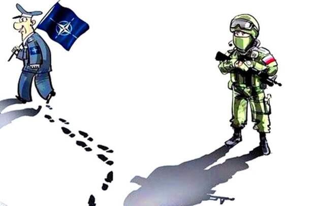 Эта потная, воняющая страхом и еще каким-то одиозным запахом куча под названием НАТО