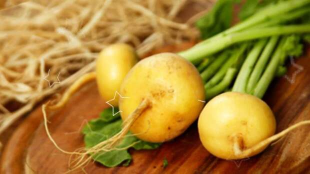 Что росло в русском огороде до картошки?