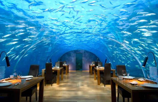 заведение под водой