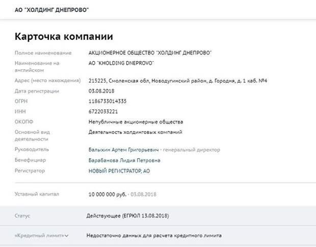 82-летняя мать Вячеслава Володина зарегистрировала новую фирму