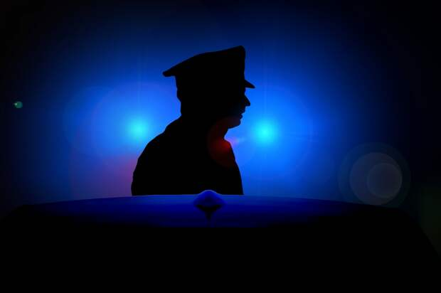 Сотрудники полиции севера Москвы задержали подозреваемого в краже