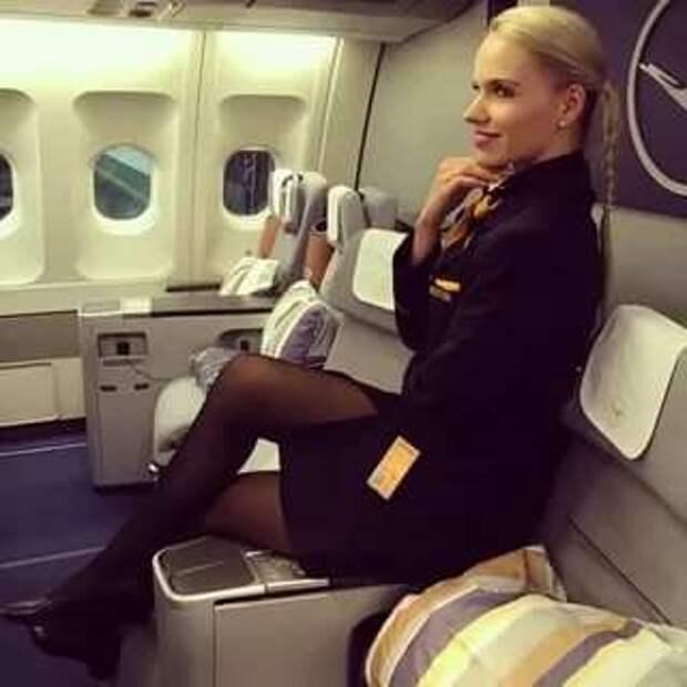 Ножки стюардесс. Подборка chert-poberi-styuardessy-chert-poberi-styuardessy-15060427022021-4 картинка chert-poberi-styuardessy-15060427022021-4