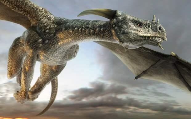 Вот так выглядит дракон