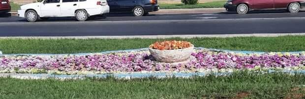"""""""Пестрый мусор"""": Акын Акыныч исполнил песню про искусственные тюльпаны в Актау"""