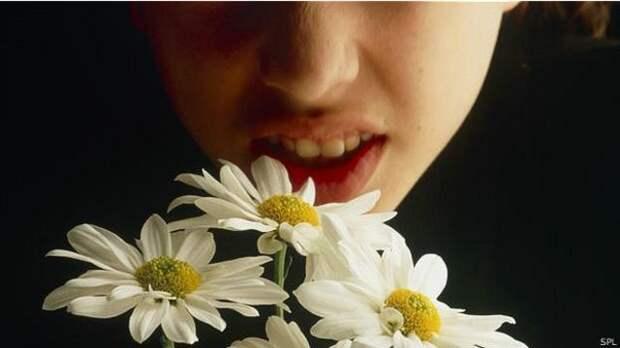 Почему мы страдаем от аллергии: новое объяснение