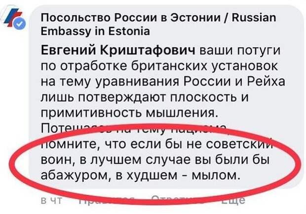 В посольстве России в Таллине объяснили, почему назвали эстонского блогера «абажуром»