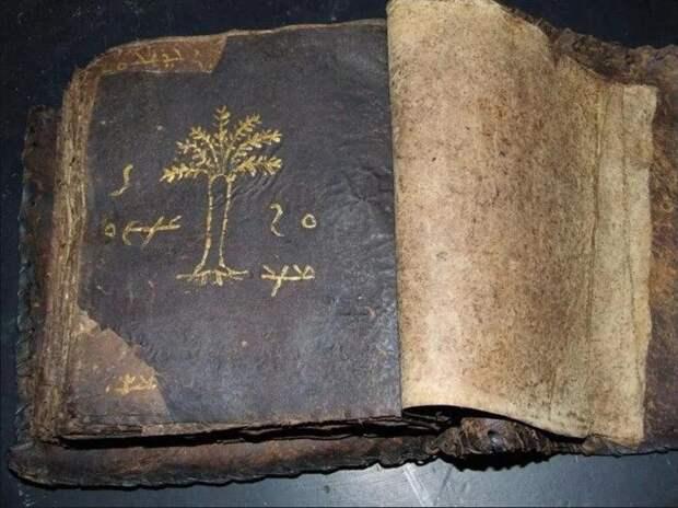 А вы уверены, что все мы читаем оригинал Библии?