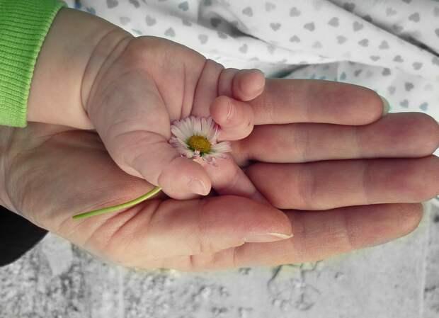 Беременные и дошкольники с коронавирусом в Удмуртии, трехзначный код в автомобильных номерах России и «экспорт демократии» США на Балканы: что произошло минувшей ночью