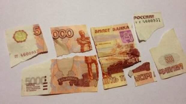 Что делать с испорченной купюрой Советы В Москве