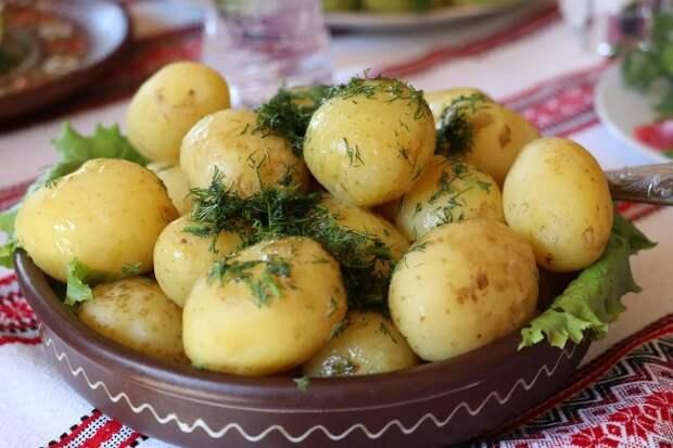 Всю свою сознательную жизнь готовил картошку неправильно. Сейчас делаю по-другому: рассказываю, как надо варить