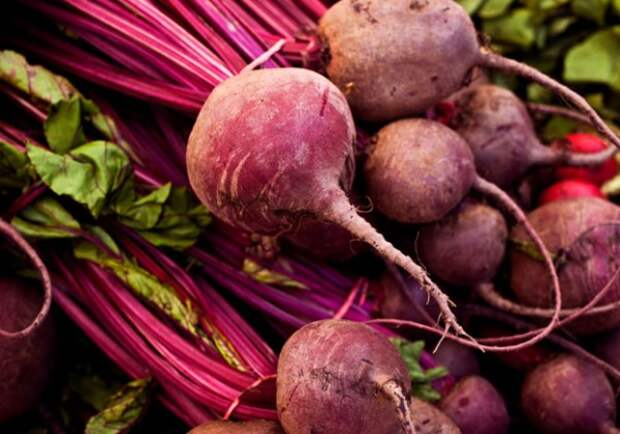 http://www.joyofkosher.com/wp-content/uploads/2010/03/Kosher-Ingredient-of-the-Month-Beets-Baby-600x420.jpg