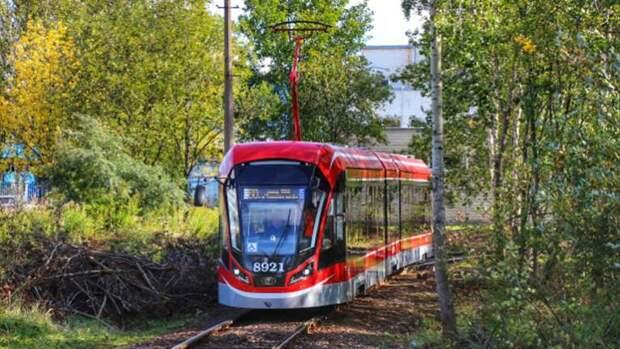 От станции метро «Девяткино» до Парнаса могут построить легкорельсовую трамвайную линию