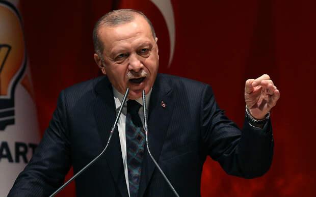 Дружить с Эрдоганом... Евгений Сатановский