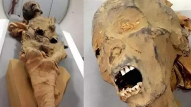 Тайна смерти «кричащей мумии» раскрыта