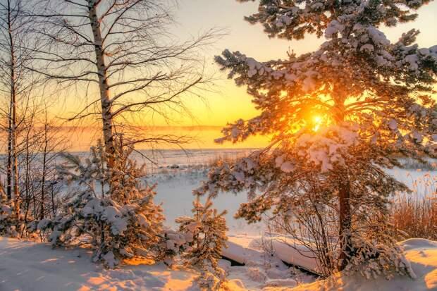 Погода в Ленобласти в воскресенье: снегопады и морозы до -26 градусов