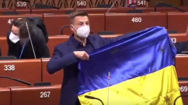Украинского депутата Гончаренко жестко отчитали в ПАСЕ за национальный флаг