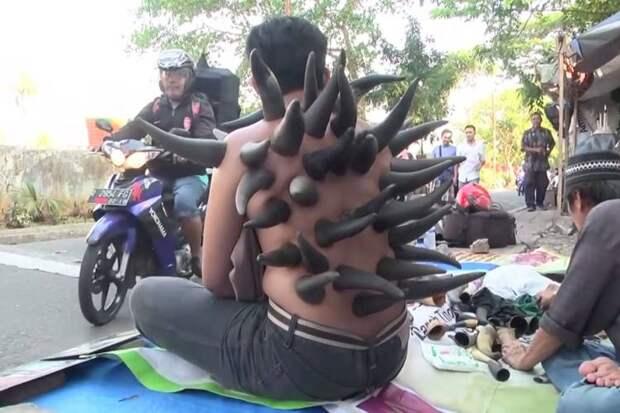 Зачем в Индонезии уличные целители ставят рога на спину пациентам