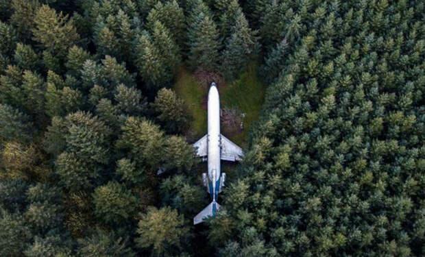 Пенсионер нашел в лесу самолет и вложил в него все деньги. Люди смеялись, а он превратил его в дворец