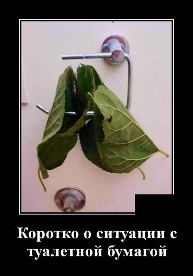 Демотиватор про туалетную бумагу