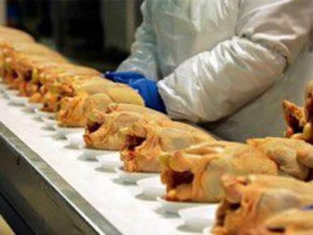 Новость на Newsland: Запад отберет у России Латинских цыплят?