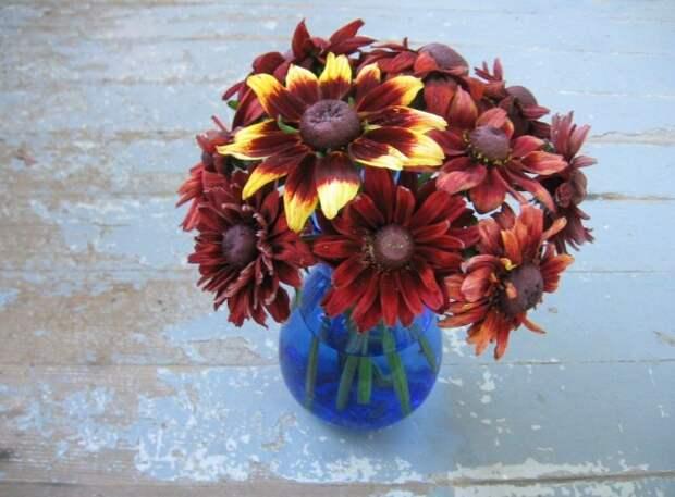 Рудбекии великолепны в свежих цветочных букетах