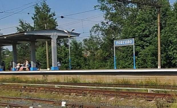 Борис Вишневский хочет получить откат от реставраторов токсовского вокзала