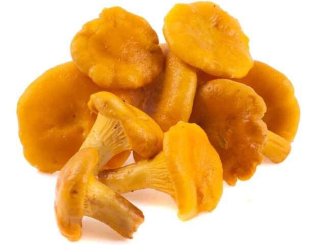 грибы лисички блюда