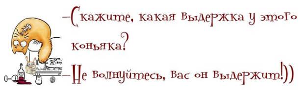 1377658477_frazochki-26 (604x191, 85Kb)