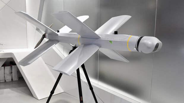 """В РФ создали первую в мире систему """"воздушного минирования"""" против БЛА"""