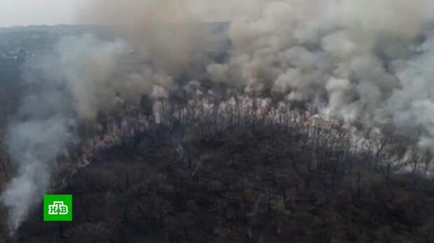 «Дышать нечем»: Владивосток накрыла плотная дымовая завеса