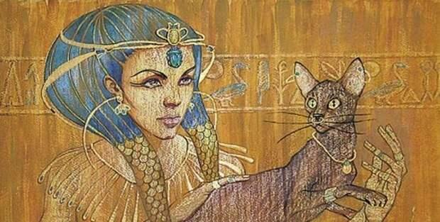 Тайная сила кошек: правда или вымысел животные, коты, факты