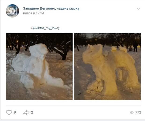 Фото дня: в Дмитровском поселился сфинкс