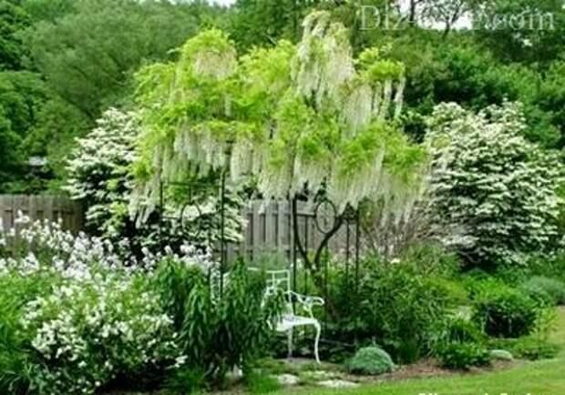 Сад Sissinghurst White Garden