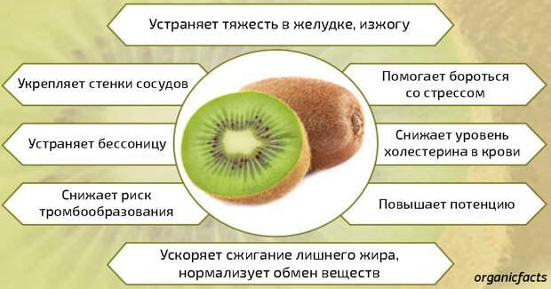 Вот что будет с вашим телом, если вы начнете съедать по 1 киви в день