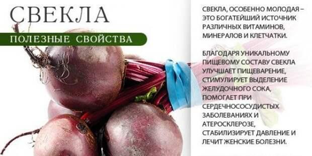 Укрепляем и чистим сосуды: 5 рецептов вкусных салатов из свеклы