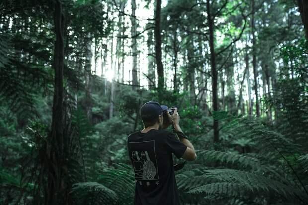 «Парк Яуза» запустил творческий фотоконкурс