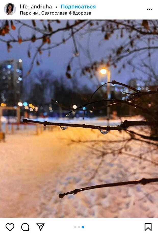 Фото дня: капель в парке имени Федорова