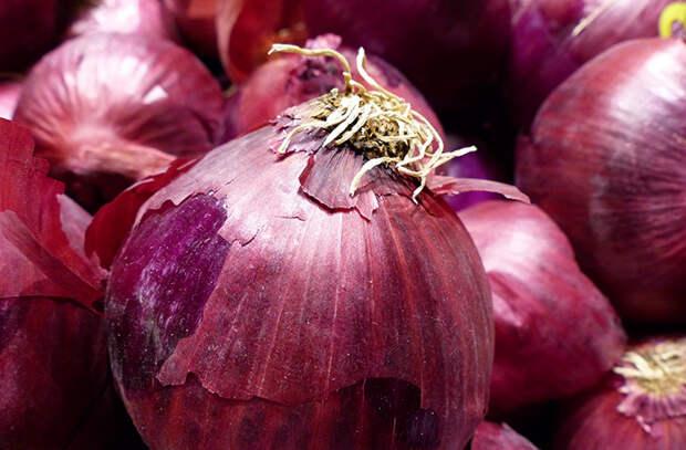Заменяем репчатый лук в еде. Смотрим еще 6 разных видов лука и выбираем блюда, к которым они лучше подходят