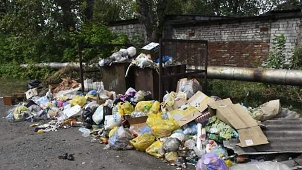 """Глава Алейска ответил на претензии жителей о провале """"мусорной"""" реформы"""