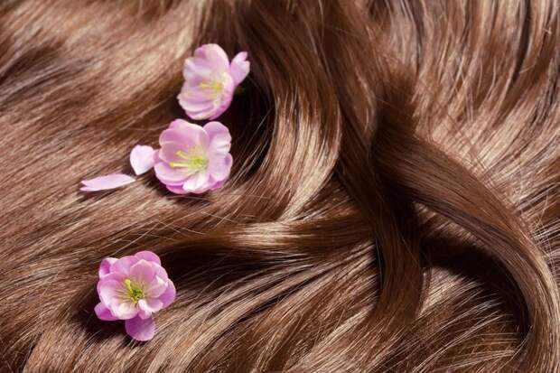 Как отрастить волосы: 12 советов, которые действительно работают