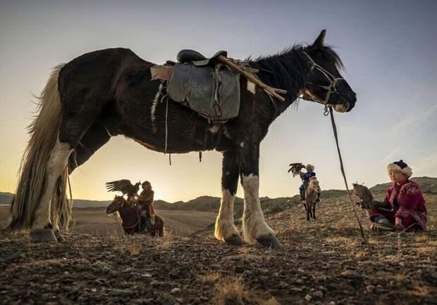 30 невероятных снимков отпобедителей конкурса International Photography Awards